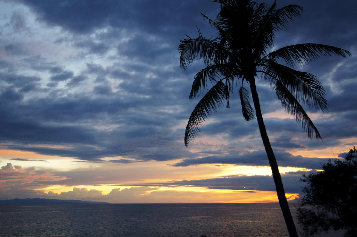 Scherenschnitt im Sonnenuntergang